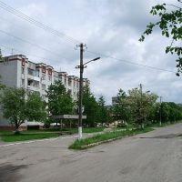 м.Сокаль, вул.Українська, Сокаль