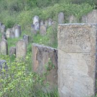 Staryi Sambir (Sambor) Jewish cemetery, Старый Самбор