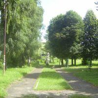 Парк і качелі, Старый Самбор
