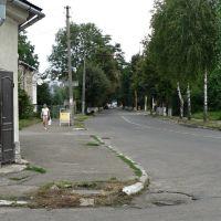 Стрий,на розі Дрогобицької і Руської вулиць, Стрый