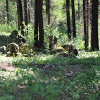 Jewish cemetery in Turka, Турка