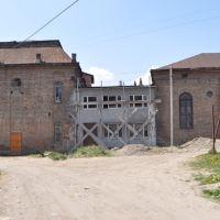 Turka synagogue, Турка