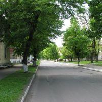 Вуличка у Старому місті, Червоноград