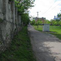 Вуличка біля палацу, Червоноград