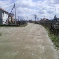 11.04.2011, Яворов