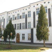 Рідна школа, Яворов