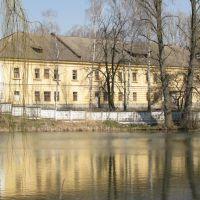 Будинок над ставом, Яворов