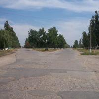 Вулиця, Баштанка
