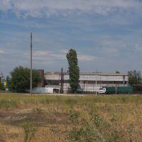 Маслобойка 3, Баштанка