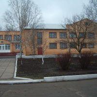 Березнеговатская средняя школа, Березнеговатое