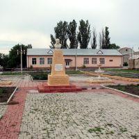 Тарас Григорович, Березнеговатое