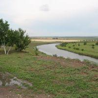 Річка Вісунь, Березнеговатое