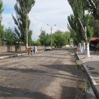 Поки що вулиця Леніна, Березнеговатое