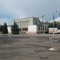 Площа, Березнеговатое