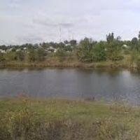 Місце впадання річки Костувата в річку Мертвовід,  біля селища Братське Миколаївської області, Братское