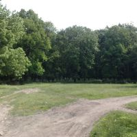 Біля парку, Братское