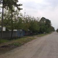 Вул. Чернишевського, Братское