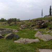 Скелі, Братское