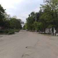 Центральна вулиця, Братское