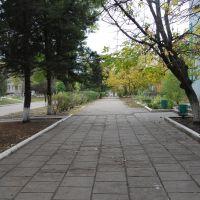 прогулка по центру, Братское
