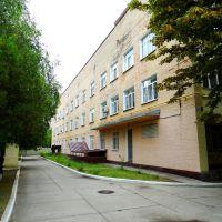вул. Пірогова, 2, Великая Корениха