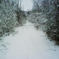 Тропинка зимой, Великая Корениха