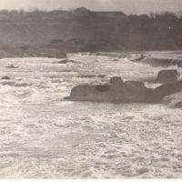 1977. Южный Буг. Не попал в протоку..., Великая Корениха