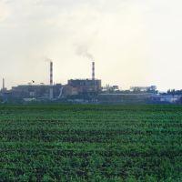 Завод возле Побугского, Великая Корениха