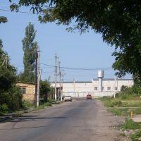 Доманёвка-дорога к РЭСу, Доманевка