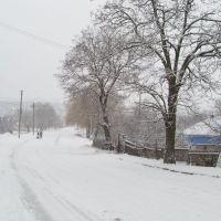 Доманевка. дорога  домой Domanevka. road home, Доманевка