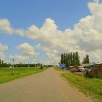 Доманевка. дорога Т1506, Доманевка