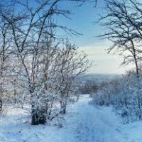 Доманевка. новый снег. панорама., Доманевка
