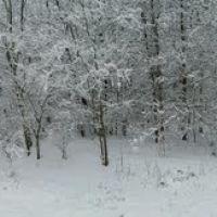 Зима. панорама 1., Доманевка