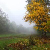 Осень, туман., Доманевка