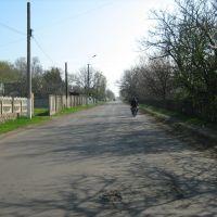 ул Васляева, Казанка