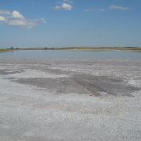Salt lake. Солёное озеро, Кривое Озеро