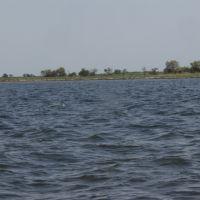 Кинбурнская коса.Ягорлыцкий залив, Кривое Озеро