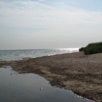 unbewohnte Insel, Кривое Озеро