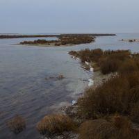 Край косы, островки, Кривое Озеро