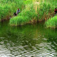 Рыбалка в центре города, Николаев