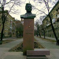 Лягин В.А., Николаев