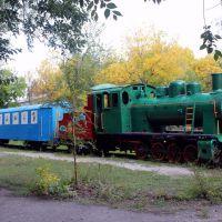 Steam locomotive. Паровоз с вагончиком на узкоколейке., Новый Буг