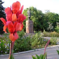 Памятник Ленину в центре Очакова, Очаков