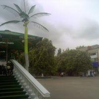 На центральной площади Первомайска., Первомайск