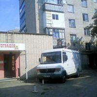 Ну,очень хорошая фотография., Первомайск