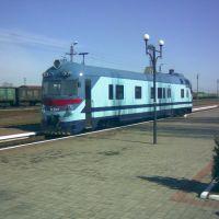 Элитный поезд ЖД работников (вид с боку), Снигиревка
