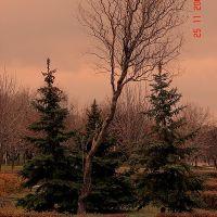 Осень в парке, Южноукраинск