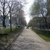 Аллея, Южноукраинск