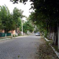 bilgorod-dnistrovsky, Аккерман