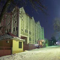 Налоговая инспекция ночью., Аккерман